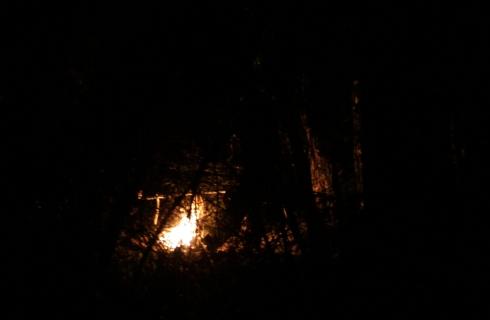 костёр в лесу