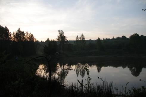 утро бобровый пруд
