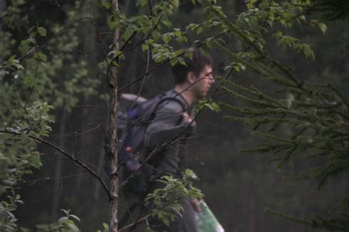 утро турист за деревьями
